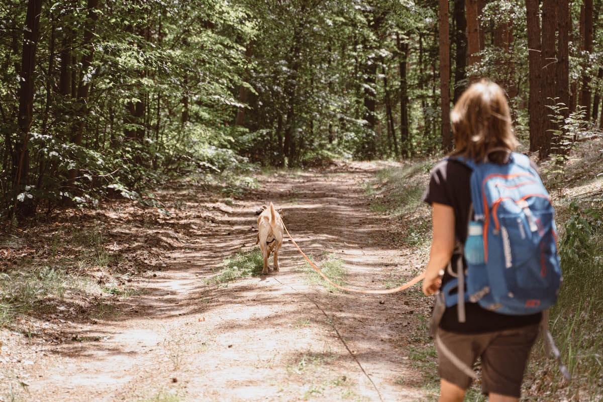 01-Wanderung-mit-Wanderfu-hrer-FRED-und-OTTO_Wanderweg