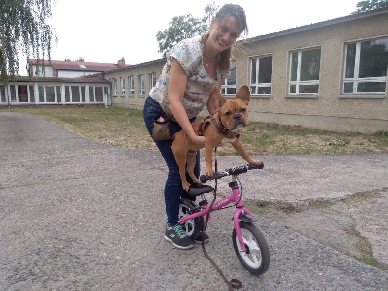 TeneFritz: Ein Hund lernt Fahrrad fahren