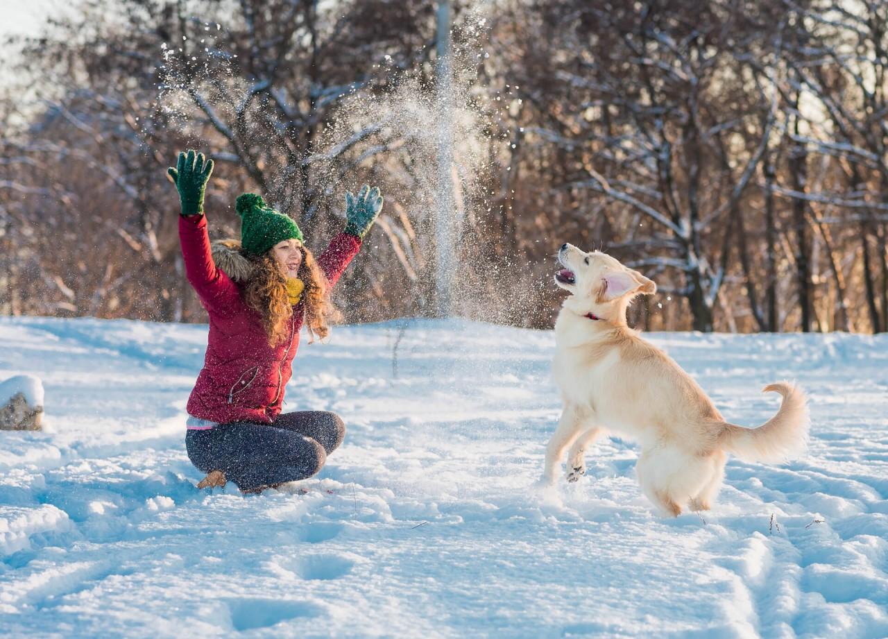 Tipps für den Winter mit deinem Hund
